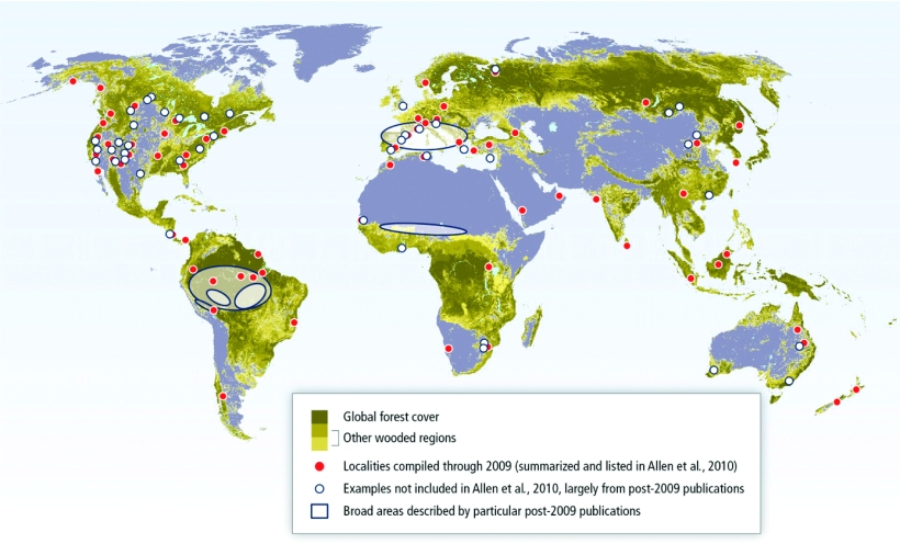 Drought- and heat-induced regional tree mortality events around the world.